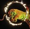 Цирки в Павловском Посаде